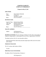 LLC-Op-Limited-Liability-Company-Worksheet-1